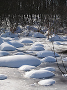 Feb 24, 2008 - Nepean, ON. Snow in a shape of domes on a sunny day in winter in the swamp area.