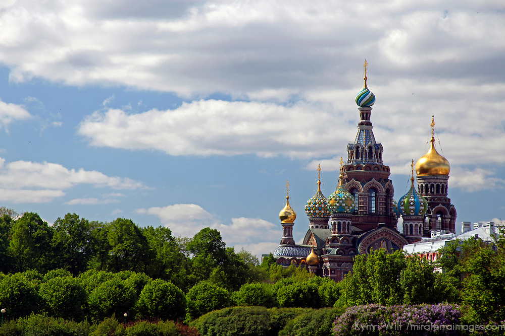 Europe, Russia, St. Petersburg. Church of the Spilled Blood and trees.