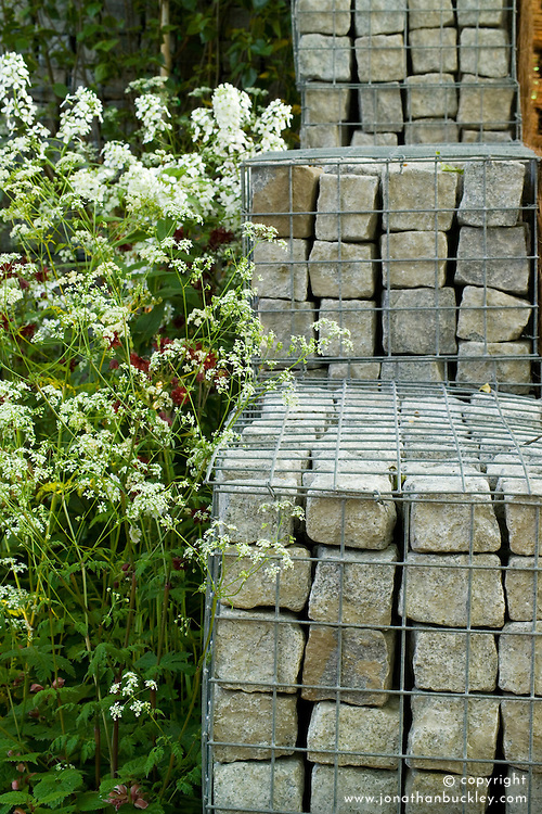 Stone filled gabions and cow parlsey in the Urban Glade Garden. Designer: Paula Ryan - Chelsea 2005