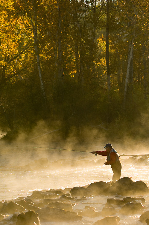 Idaho. Boise. Fiy fisherman on Boise River with fall colors. MR