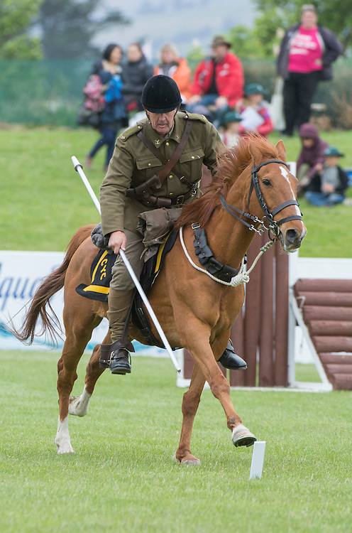 Mark Appleton on Enzo, part of The Canterbury Mounted Rifles, puts on a display of Tent Pegging at the Canterbury A&P Show, Christchurch, New Zealand, November 11, 2015. Credit: SNPA /  David Alexander.