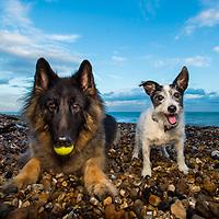 Alfie and Ben