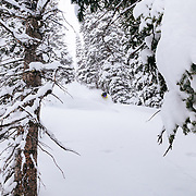 Forrest Jillson skis a monster late-season winter storm in the Tetons.