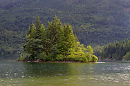 Sunshine illuminates the trees on a small island in Hicks Lake at Sasquatch Provincial Park, British Columbia, Canada