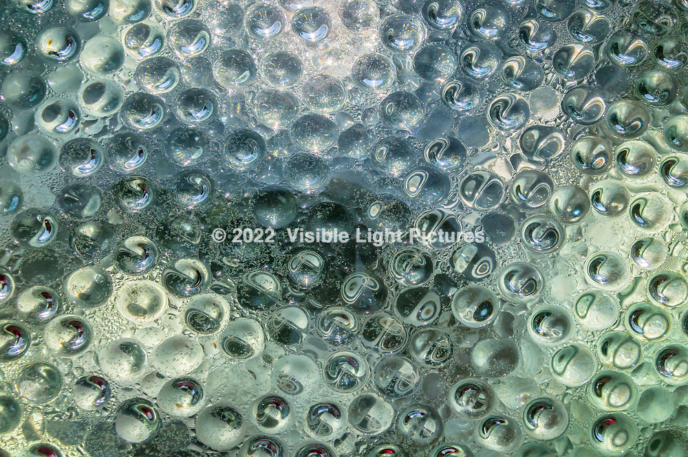 Water droplets forming on the inside of a a glass enclosure.