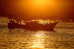 November 8, 2016 - Gaza, gaza strip, Palestine - Palestinian fishermen arrive on their boats to the Gaza seaport after a night fishing trip,  Nov. 8, 2016. (Credit Image: © Majdi Fathi/NurPhoto via ZUMA Press)