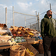 Hussein Hayari waits for customers at his open-air produce market in Hunting Park, one of very few places selling fresh produce in the neighborhood. Food deserts, or areas with little access to healthy foods, are not uncommon in Philadelphia. Construction of a building that would allow him to expand his business stalled after being denied bank loans and help from the city government.