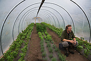 LIVING OFF THE GRID<br /> Paul Castellani is sitting in the Castellani green house where they grow basil, rosemary, oregano and parsley.<br /> Anchor Point, Alaska, USA