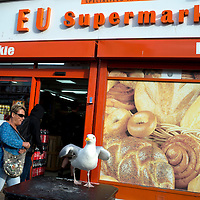 Bognor Regis, Sussex. Polish delicatessen called EU supermarket, with seagull outside.