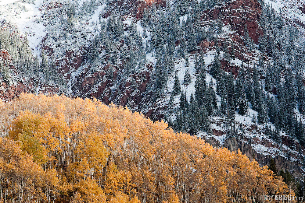 Fall aspens and fresh snow colide just above Maroon Lake, Maroon Bells Scenic Area near Aspen, Colorado.