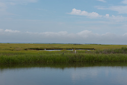 Shot overlooking NJ wetlands with blue skies, white clouds and an egret in the water