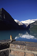 Squirrel, Lake Louise, Banff National Park, B.C., Canada<br />