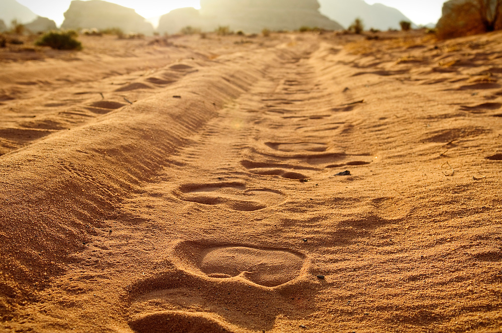 Camel tracks in sand at sunrise in Wadi Rum, Jordan<br />