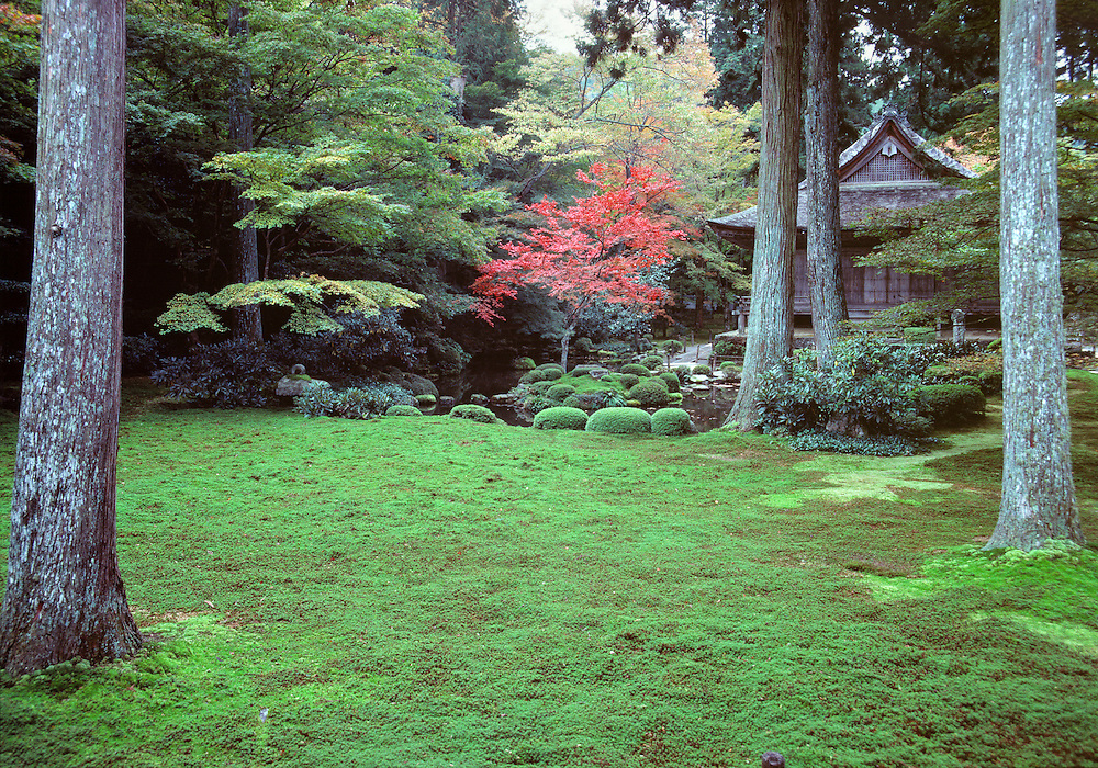 The Buddhist temple at Sanzen-in is a small refuge in the middle of bustling Kyoto, Honshu, Japan.