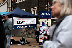 UK ENGLAND LONDON CROYDON 16APR16 - Volunteer campaigner Kathleen Garner at the stall of the Vote Leave campaign on the Croydon high street in south London.<br /> <br /> jre/Photo by Jiri Rezac<br /> <br /> © Jiri Rezac 2016
