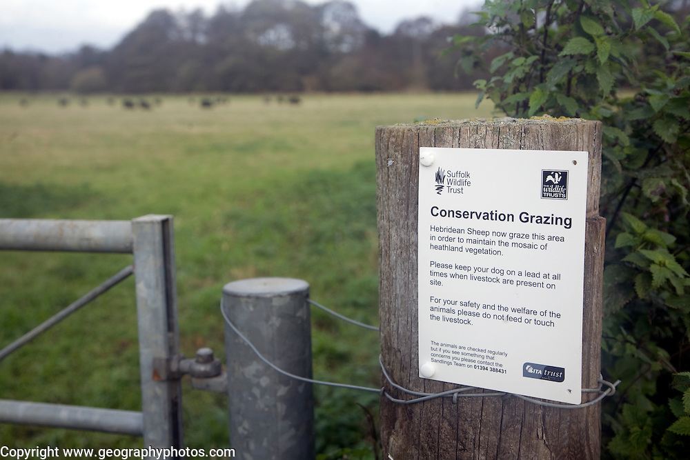 Sign for conservation grazing on fence post of field, Sutton, Suffolk, England