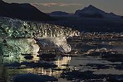 Walking from left to right, I think this Ice floe reminds me of a frozen Ice Bear. Kongsfjord, Spitsbergen | Gående fra venstre til høyre, minner denne isklumpen meg om en frossen Isbjørn. Kongsfjorden, Svalbard