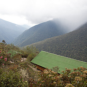 Wayqecha Biological Reserve on the Eastern slopes of the Peruvian Andes. Cloud forest at 2950 meters elevation. The reserve is managed by the Amazon Conservation Association and the Asociación para la Conservación de la Cuenca Amazónica.