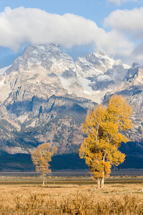 Scenic image of Grand Teton National Park in fall. WY.