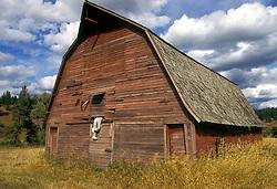 Eastern Montana:  .A barn with a sense of humor.