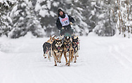 Musher Anthony Beck competing in the Fur Rendezvous World Sled Dog Championships at Goose Lake in Anchorage in Southcentral Alaska. Winter. Afternoon.