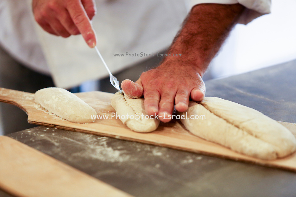 The shaped loaves are allowed to leaven before baking, Photographed at a boutique bakery