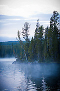 Shoshone Lake just after sunrise in Yellowstone National Park.