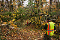 A crew of volunteers worked to clear the trails of Ramblin' Vewe Farm on Sunday morning following last weeks storm that downed dozens of trees throughout their trail system.  (Karen Bobotas/for the Laconia Daily Sun)