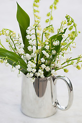 Convallaria majalis in a pewter tankard. Lily of the valley