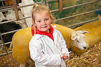 Young girl in sheep pen<br /> Royal Welsh Show 2011<br /> Llanelwedd<br /> Powys<br /> Mid<br /> Events