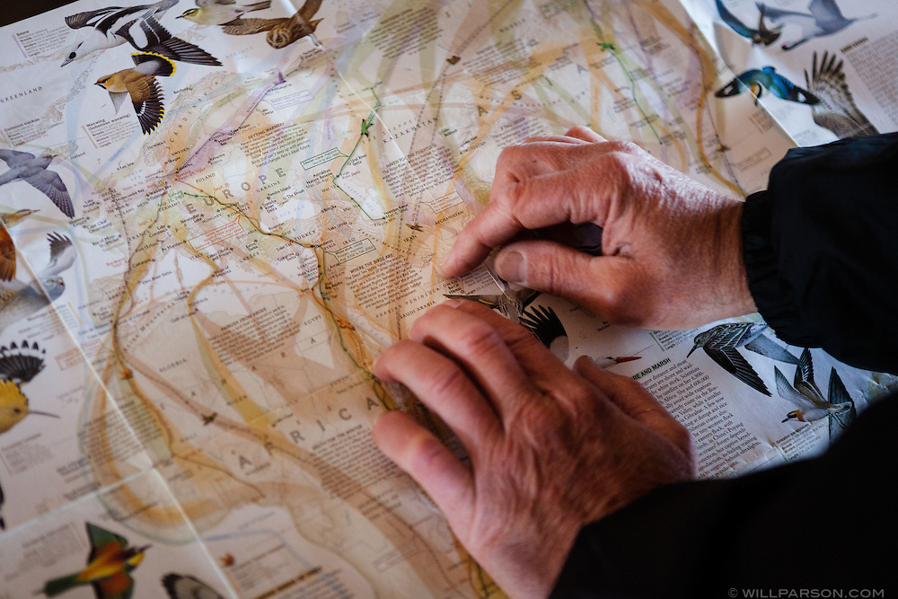 On a National Geographic map of bird migrations at Carter Hill Raptor Observatory in Concord, N.H., Robert Vallieres points out the Persian Gulf, where he was stationed during the Gulf War.