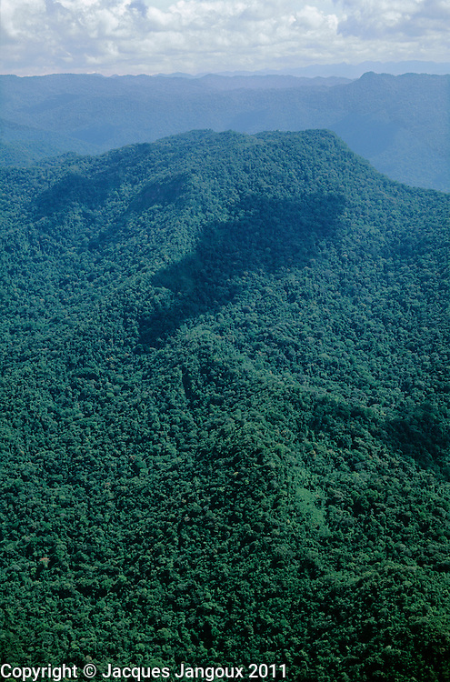 Aerial of Maigualida Mountains (Sierra de Maigualida) granitic mountain range (unlike the tepuis, sedimentary sandstone table mountains that surround it) covered with tropical rainforest and montane rainforest, Guiana Highlands, Guiana Shield, Amazonas State, Venezuela..