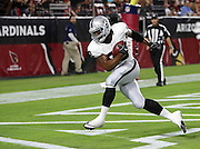 Oakland Raiders tight end Clive Walford (88) stretches as he catches a 19 yard touchdown pass good for a 10-3 first quarter Raiders lead during the 2016 NFL preseason football game against the Arizona Cardinals on Friday, Aug. 12, 2016 in Glendale, Ariz. The Raiders won the game 31-10. (©Paul Anthony Spinelli)