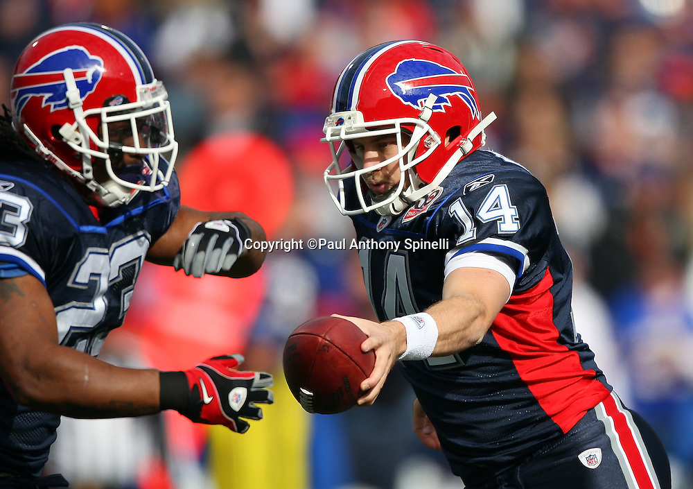 Buffalo Bills quarterback Ryan Fitzpatrick (14) hands off the ball to Bills running back Marshawn Lynch (23) on a running play during the NFL football game against the Houston Texans, November 1, 2009 in Orchard Park, New York. The Texans won the game 31-10. (©Paul Anthony Spinelli)