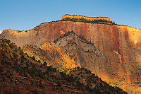Mountain Scenery, Zion National Park, located in the Southwestern United States, near Springdale, Utah.