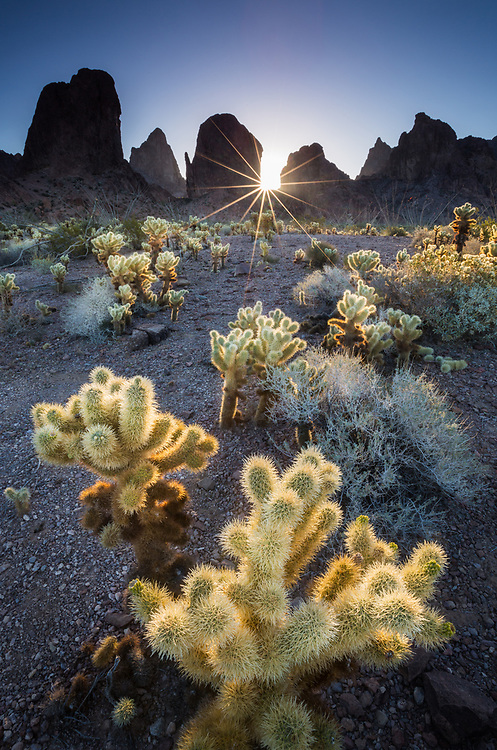 Sunrise, sunstar over the Kofa Mountains in southern Arizona