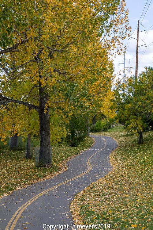winding pathway along the Bow River Pathway, Inglewood Calgary Alberta