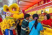 31 JANUARY 2014 - BANGKOK, THAILAND:   A Chinese Lion dancer performs in a jewelry shop on Yaowarat Road during Lunar New Year festivities, also know as Tet and Chinese New Year, in Bangkok. This year is the Year of the Horse. The Lion Dance scares away evil spirits and brings prosperity and luck. Ethnic Chinese make up about 14% of Thailand and Chinese holidays are widely celebrated in Thailand.     PHOTO BY JACK KURTZ