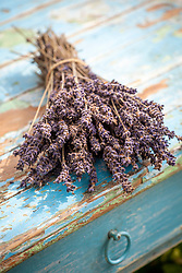 Bunch of dried lavender flowers