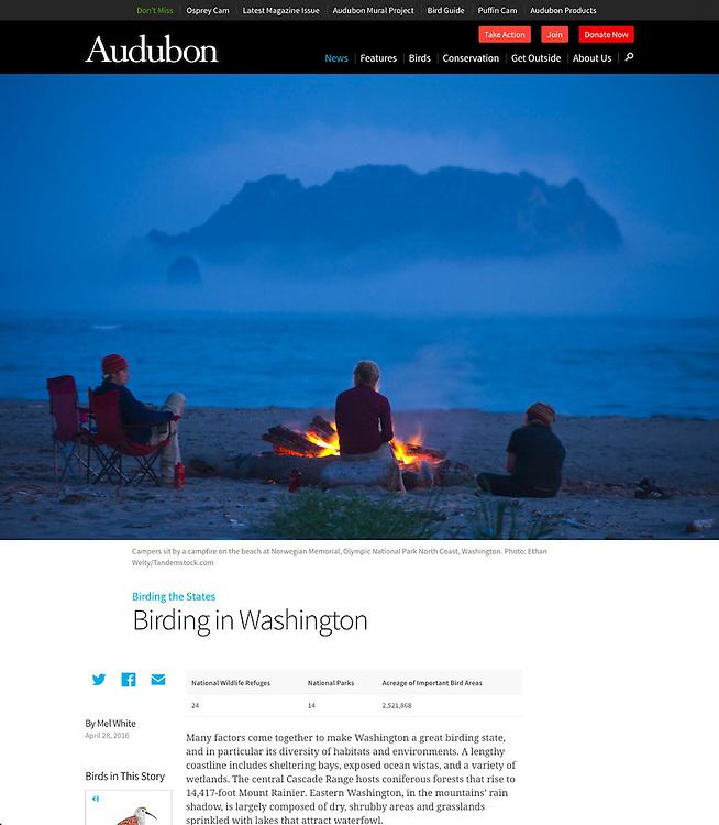 Audubon: Birding in Washington (28 April 2016)