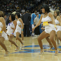 06 December 2008:  during a 106-87 win by the New Orleans Hornets over the Memphis Grizzlies at the New Orleans Arena in New Orleans, LA..