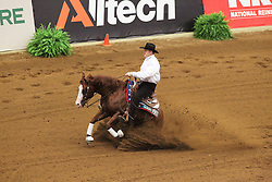 Mccutcheon Tom (USA) - Gunners Special Nite<br /> Alltech FEI World Equestrian Games <br /> Lexington - Kentucky 2010<br /> © Dirk Caremans