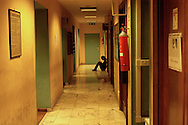 Roma  4 Febbraio 2005.Conferenza stampa nelle sede del giornale Il Manifesto,in  via Tomacelli, per il rapimento di Giuliana  Sgrena  inviata del giornale in Iraq..