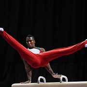 Joshua Dixon, Colorado Springs, Colorado, in action on the Pommel horse during the Senior Men Competition at The 2013 P&G Gymnastics Championships, USA Gymnastics' National Championships at the XL, Centre, Hartford, Connecticut, USA. 16th August 2013. Photo Tim Clayton
