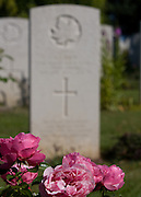 Headstone of Captain S.S. Bird, North Nova Scotia Highlanders with pink roses in foreground, Beny sur Mer Canadian War Cemetery, Normandy, France.