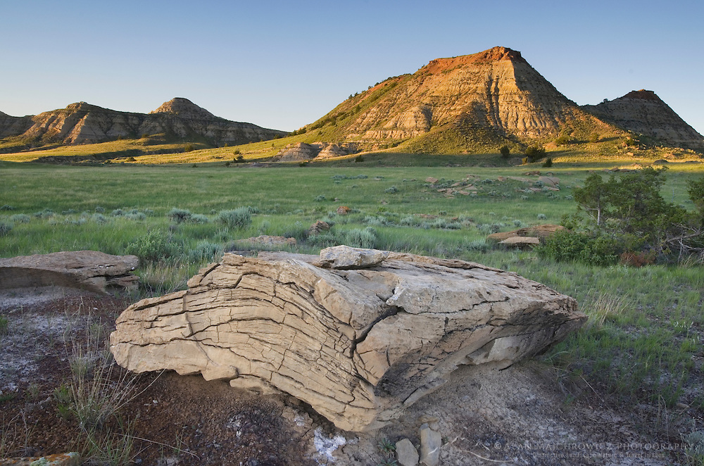 Mineral concretions in the Terry Badlands of Southeast Montana
