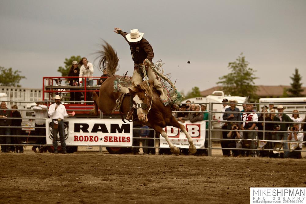 A cowboy rides bareback, Eagle Rodeo, Eagle, Idaho, USA