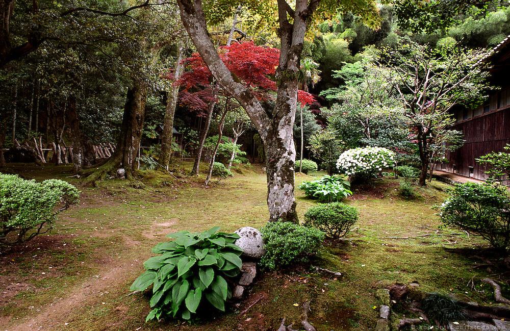 LIVING ZEN - HOSHINJI MONASTERY, OBAMA-JAPAN..Moss garden at the backside of the monastery.