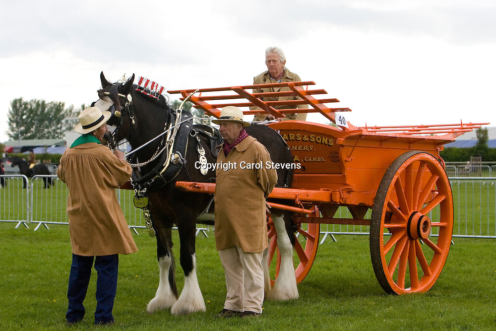 Newark and Notts Show 2010<br /> Mike Bingham