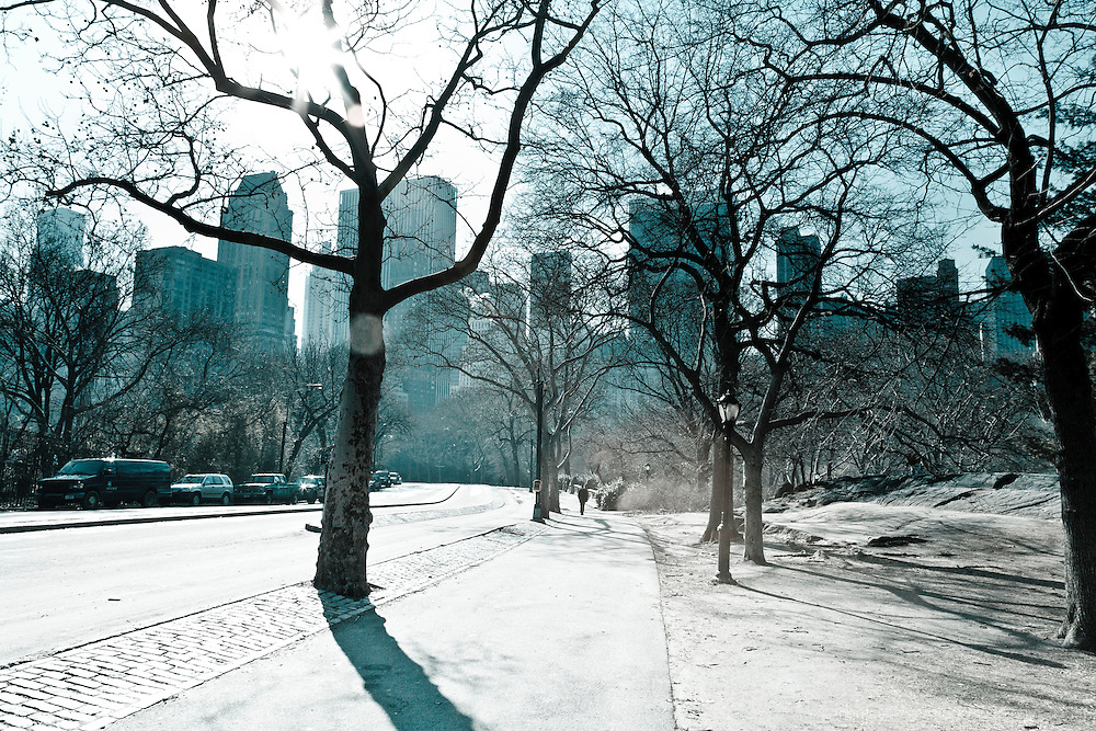 A Cold image of the drive through Central Park in Winter. Artisticly treated with a cold tone